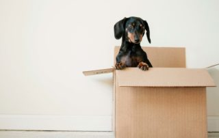 Five Signs It's Time To Move