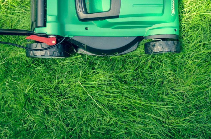 Lawn Care for Summer Heat
